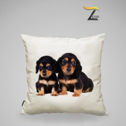 Cojín foto mascotas